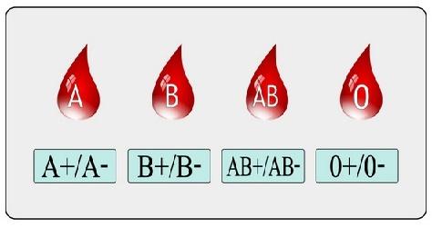 Kan gruplarını kim buldu